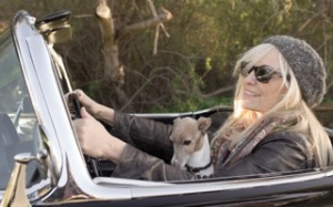 Lisa in Corvette