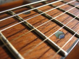 Acoustic-Guitar-fret-board
