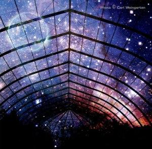 Life-Under-Stars-Artwork