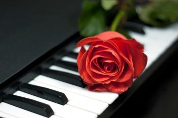 Rose at  keys