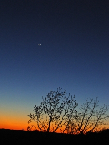 4-5-sunset-crescent-moon